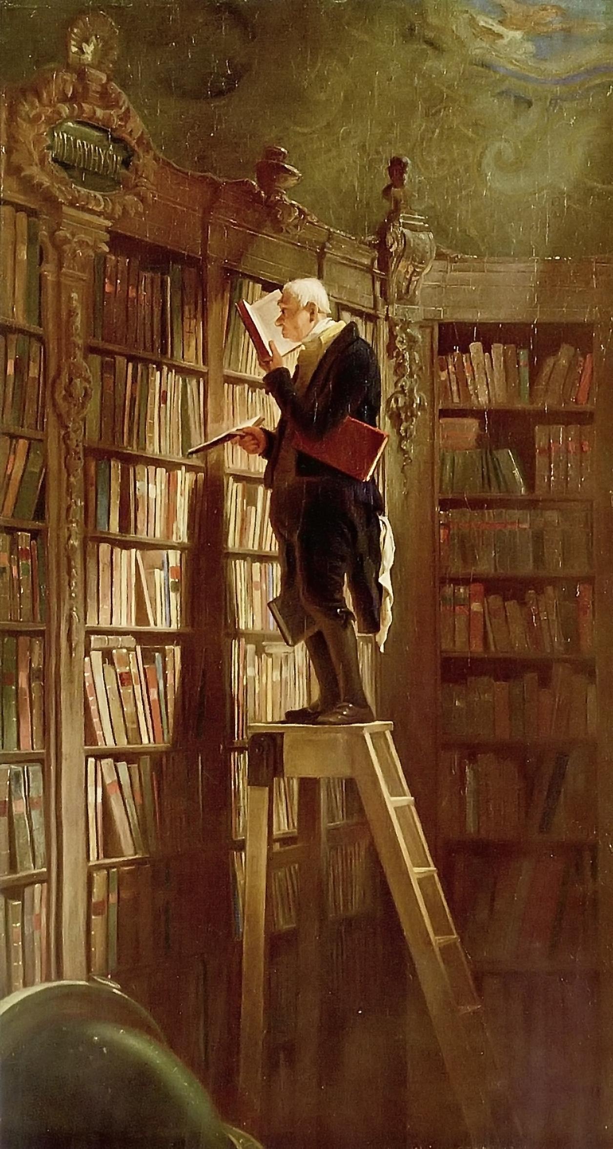 book worm ladder