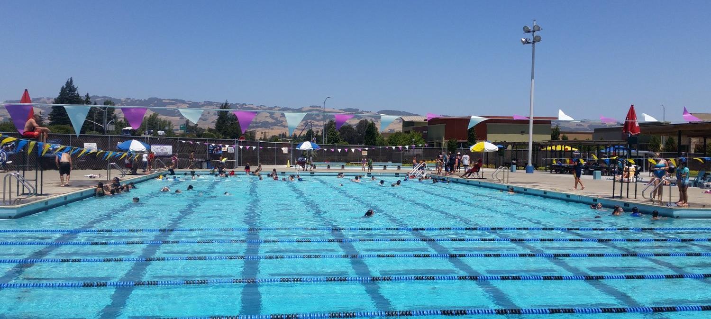 Pet Swim Pool