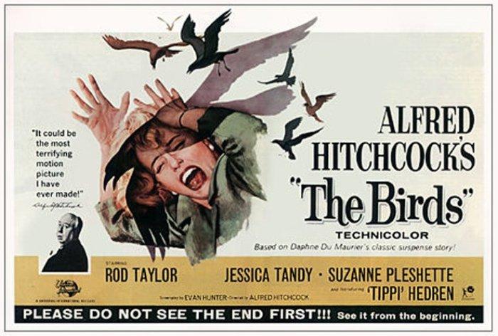 The Birds 2