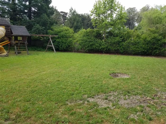 yard hole