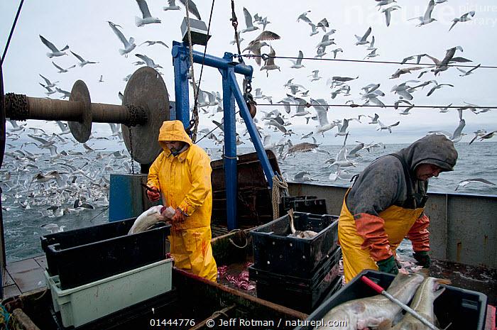 fishermen trawler