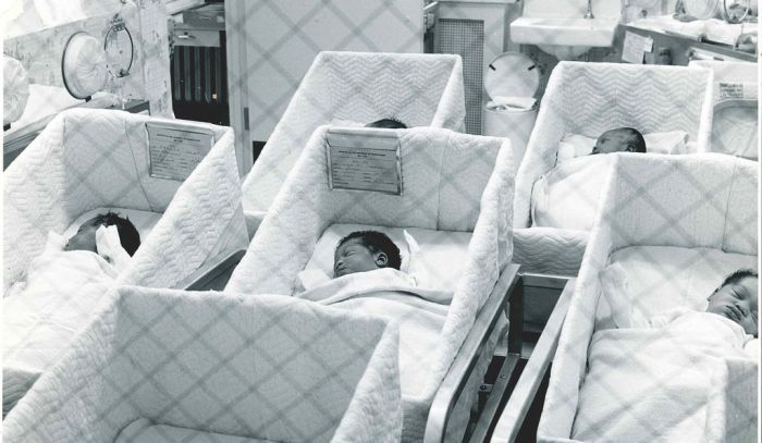babies-in-hopsital-cribs